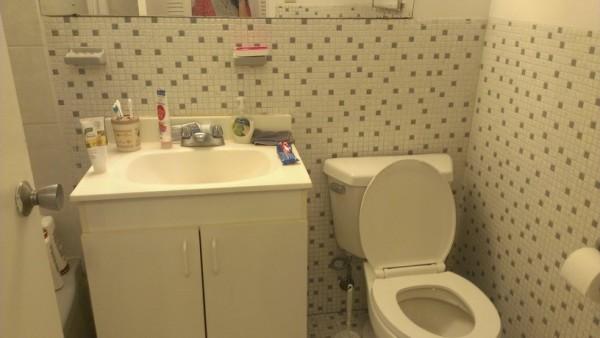 房屋平面设计图一厅一卧一厕